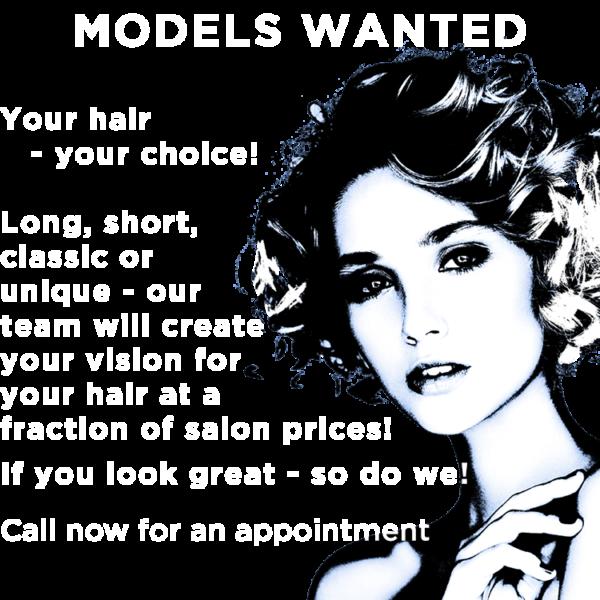models wanted 3